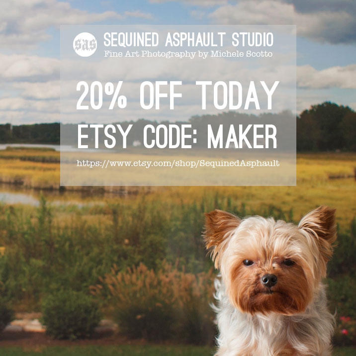 Coupon-Code-yorkie