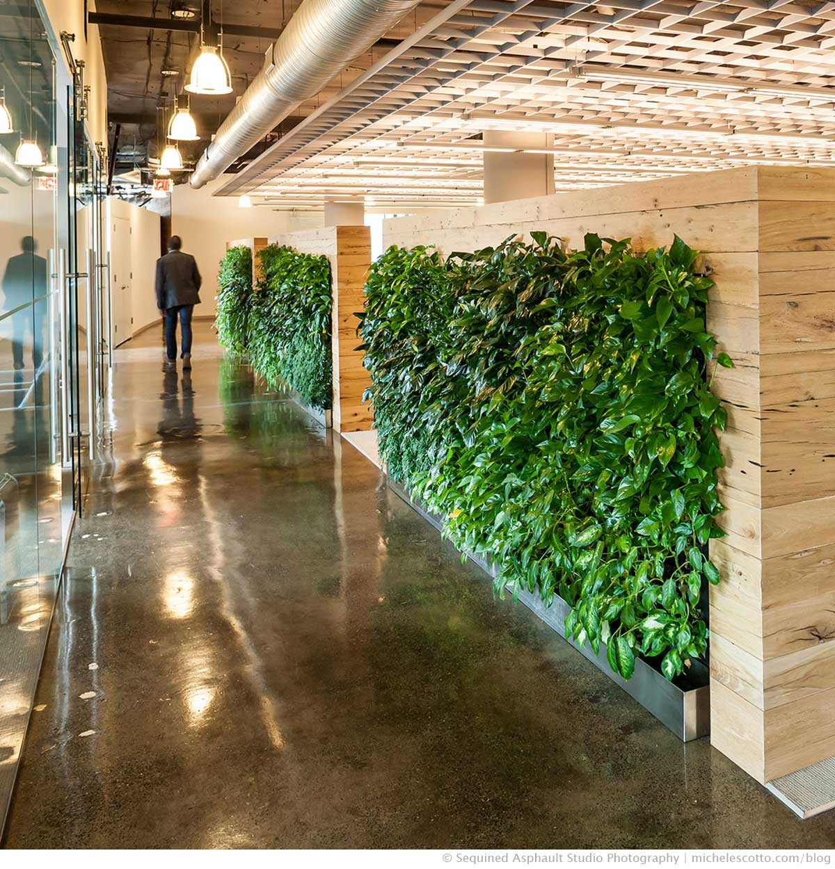 Green commercial office interior designed by beinfield architecture pc